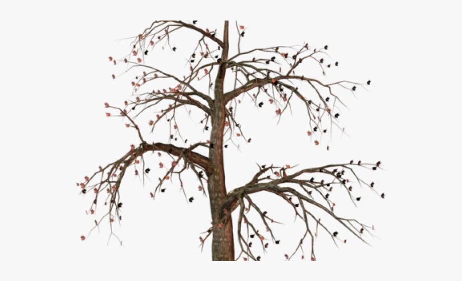 Dead christmas tree clipart clip freeuse Dead Tree Clipart - Transparent Background Dead Tree Png #1522913 ... clip freeuse