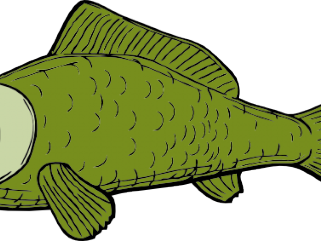 Dead fish clipart royalty free Dead Fish Clipart 8 - 519 X 454 | carwad.net royalty free