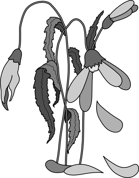 Dead plants clipart picture freeuse library Dead plants clipart » Clipart Portal picture freeuse library