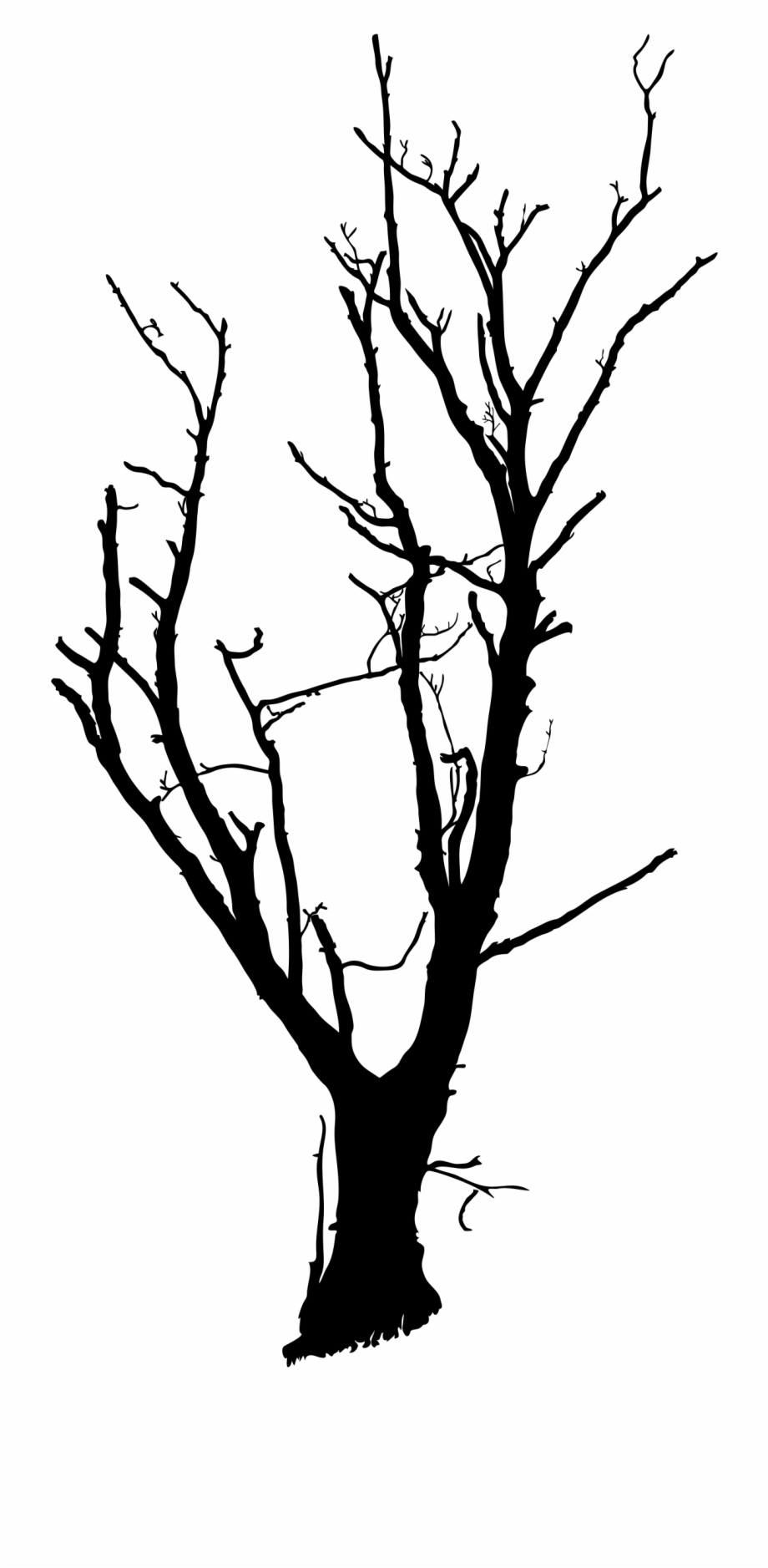 Deadtree clipart picture black and white download Drawing Trees Dead Tree - Stem Clipart Black And White, Transparent ... picture black and white download