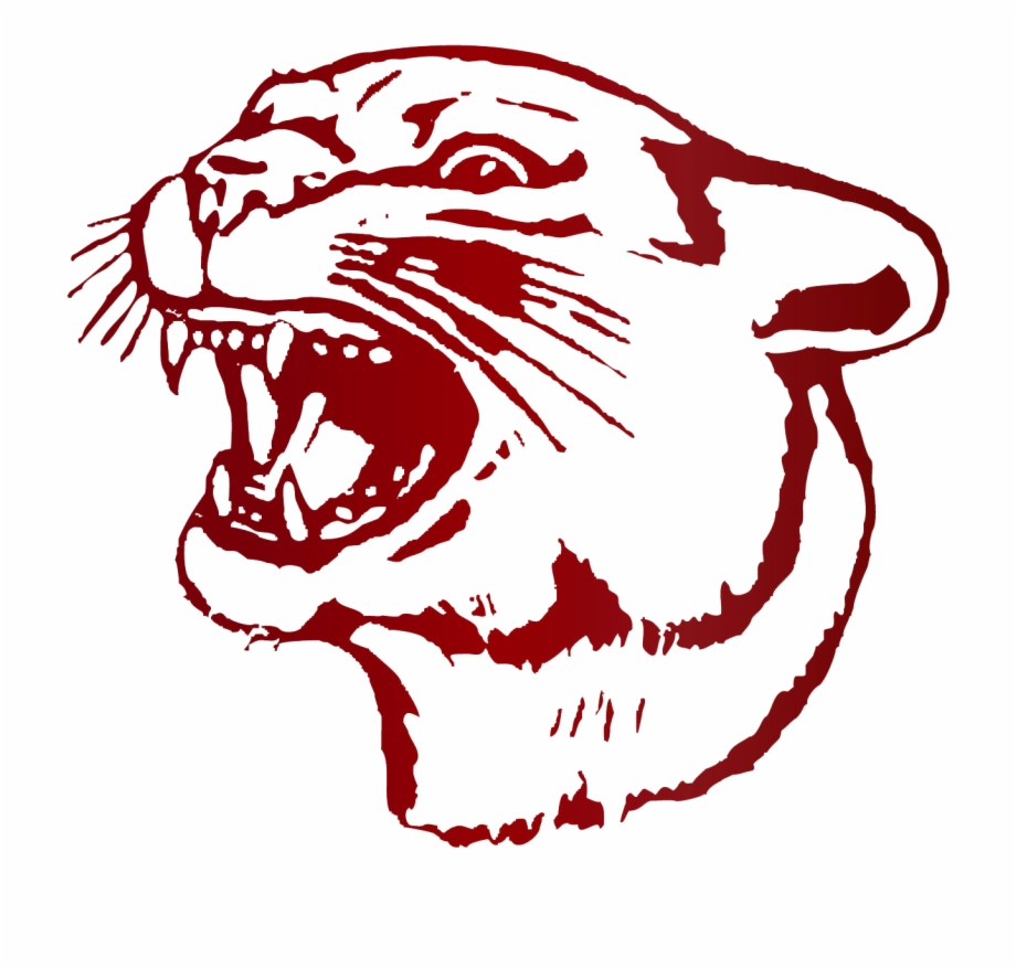 Decatur clipart vector free library Cougar Png - South Decatur High School Free PNG Images & Clipart ... vector free library