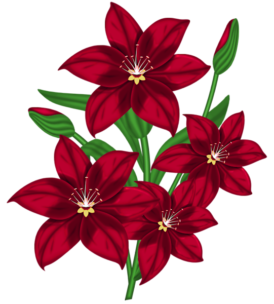 December flower clipart png free download Nice Red PNG Poinsettia Clipart. | позитивный скрапбукинг. Картинки ... png free download