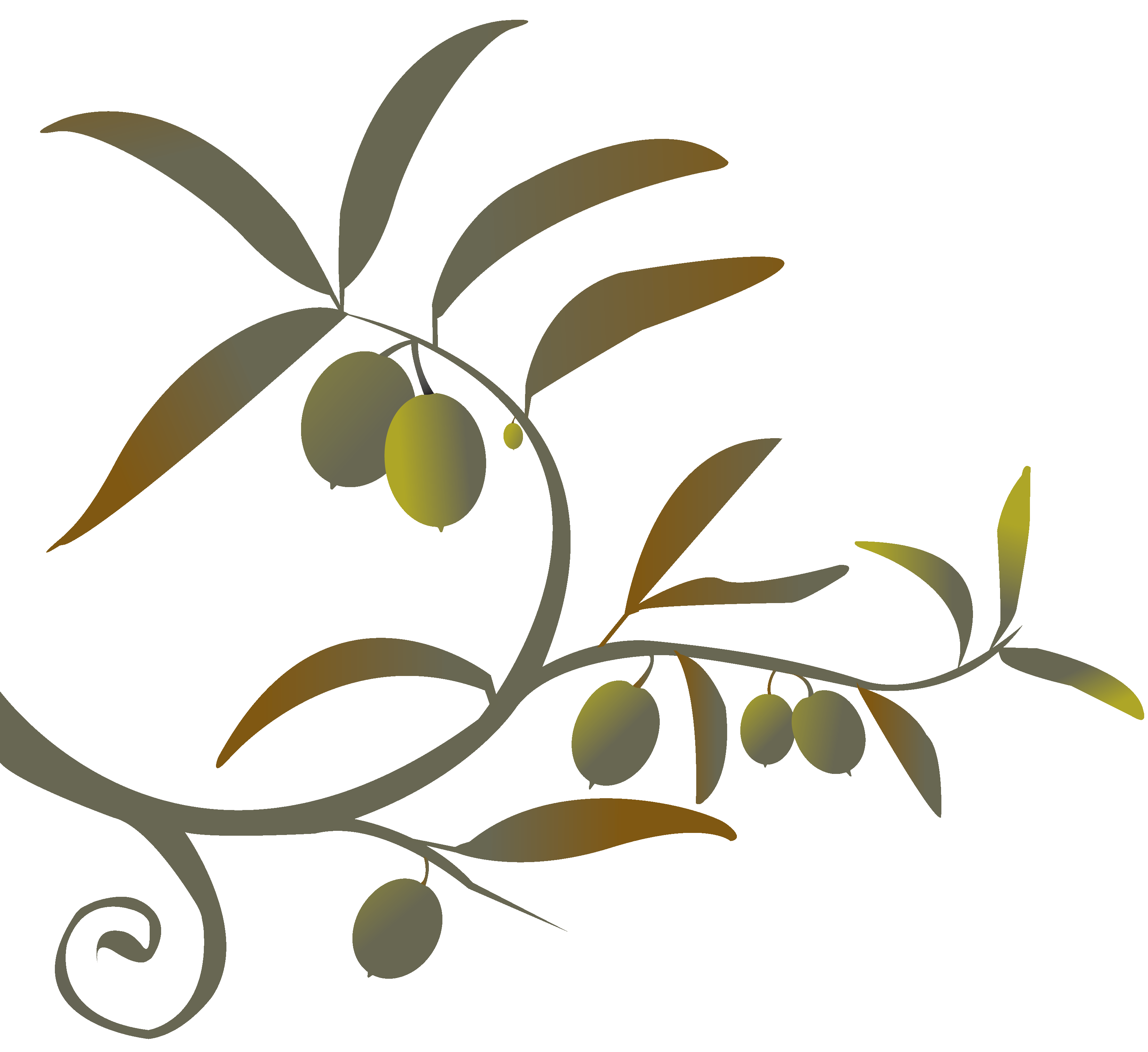 Decision tree clipart image freeuse library Deeply Connected - Sierra Pacific Synod image freeuse library