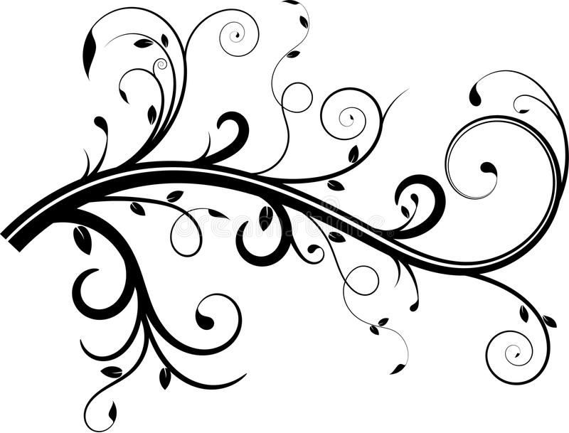 Decorative elegant vines and swirls with leaves clipart transparent download Photo about Vine flourish with swirls and leaves ... transparent download