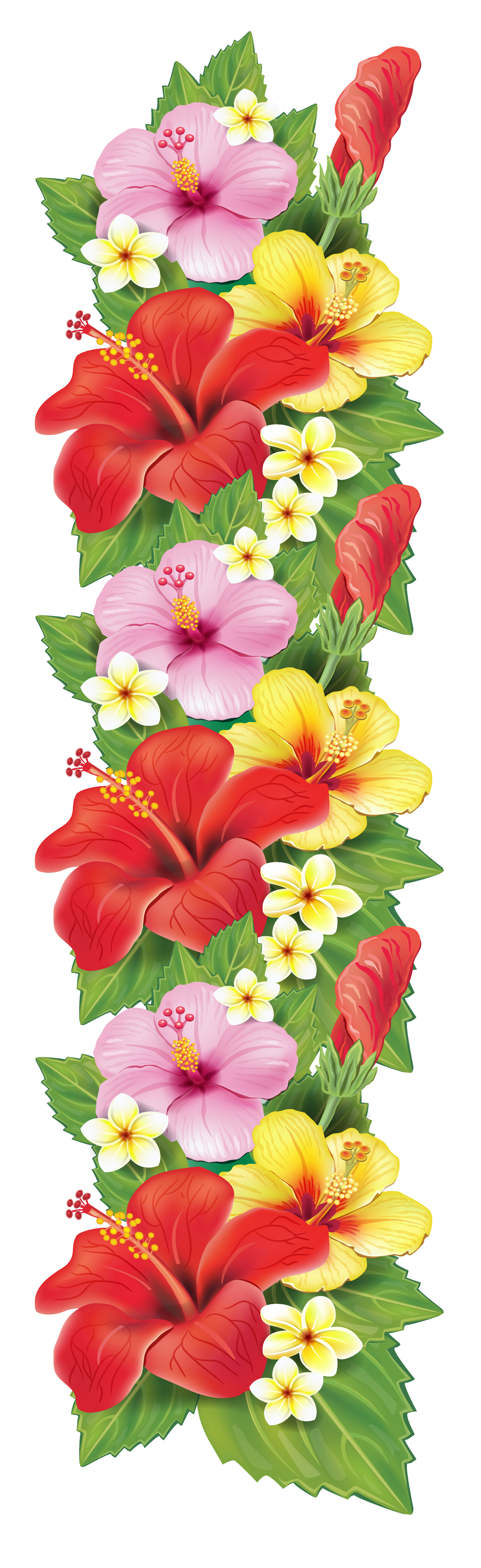 Vertical flower border clipart svg freeuse library Exotic Flowers Decoration PNG Clipart | حروف | Pinterest | Exotic ... svg freeuse library