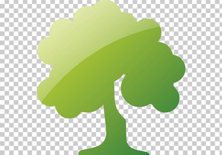 Decuduous clipart picture Computer Icons Tree Deciduous PNG, Clipart, Computer Icons, Conifers ... picture