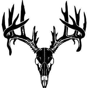 Deer skull clipart stock Deer Skull Decal Drop Tine   Clipart Panda - Free Clipart Images stock