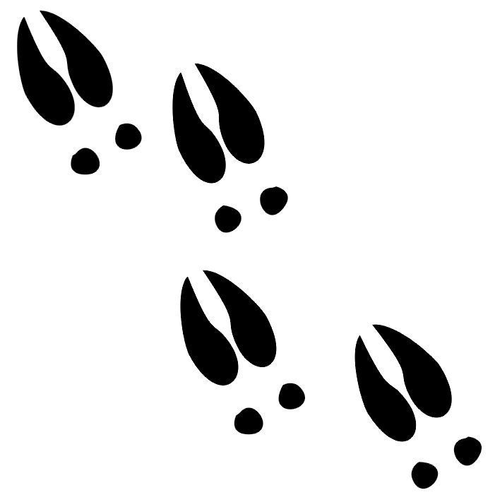 Deer tail clipart banner library library Free Deer Footprints Cliparts, Download Free Clip Art, Free Clip Art ... banner library library
