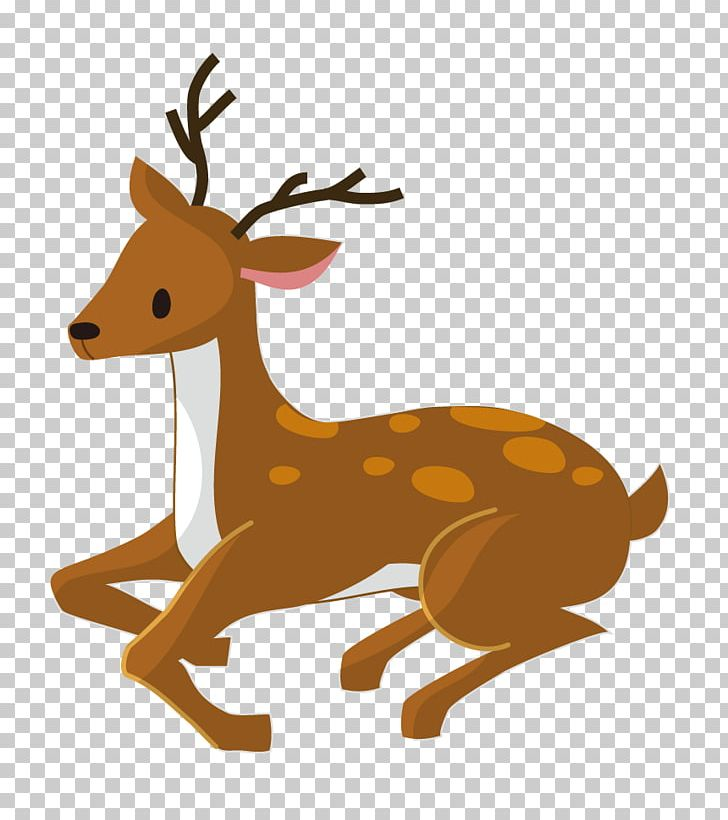 Deer tail clipart picture free stock Reindeer Antler Wildlife Tail PNG, Clipart, Antler, Cartoon, Deer ... picture free stock