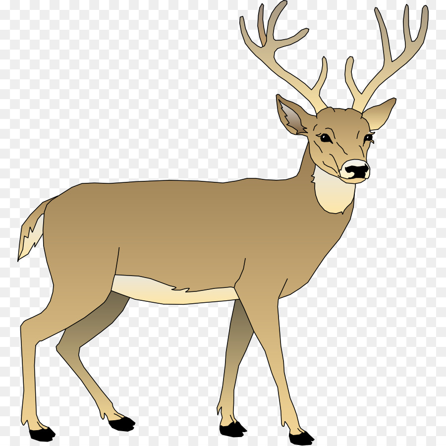 Deer tail clipart vector free download White tail deer clipart 7 » Clipart Station vector free download