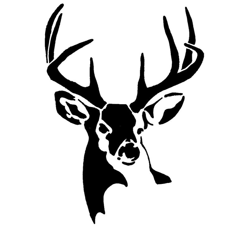 Whitetail deer outline clipart banner freeuse download Whitetail Buck Deer Stencil | Animal Silhouettes, Vectors, Clipart ... banner freeuse download