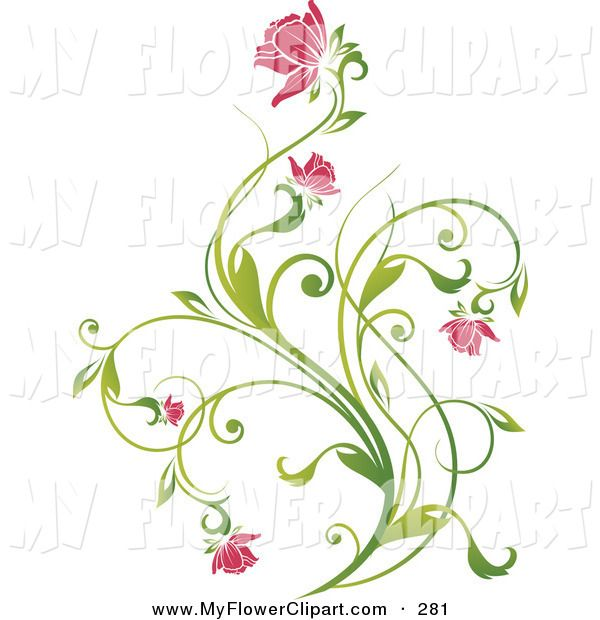 Delicate clipart graphic library download Clip Art of a Delicate Green Vine with Pink Blooming Flowers on a ... graphic library download