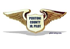 Delta pilot wings clipart bw png free stock 8 Best pilot wings images in 2012 | Wings, Pilot, Naval aviator png free stock