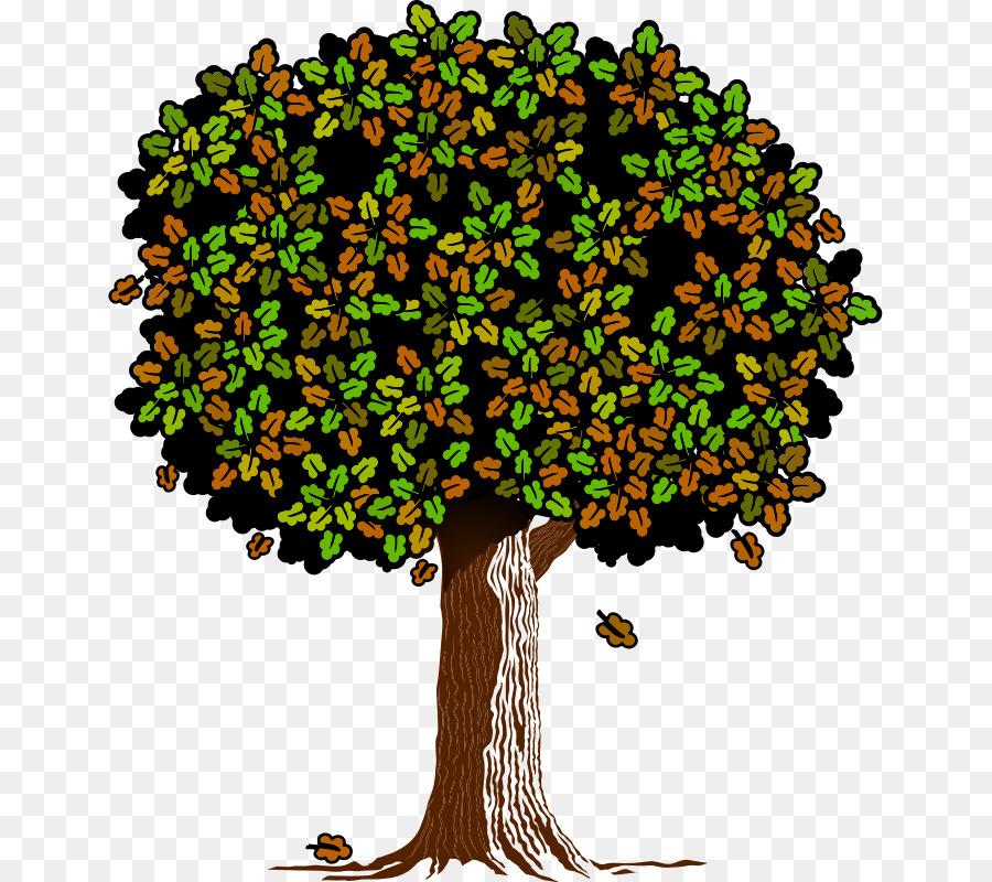 Derive clipart banner Branch Clip art Tree Oak Leaf - derive illustration banner