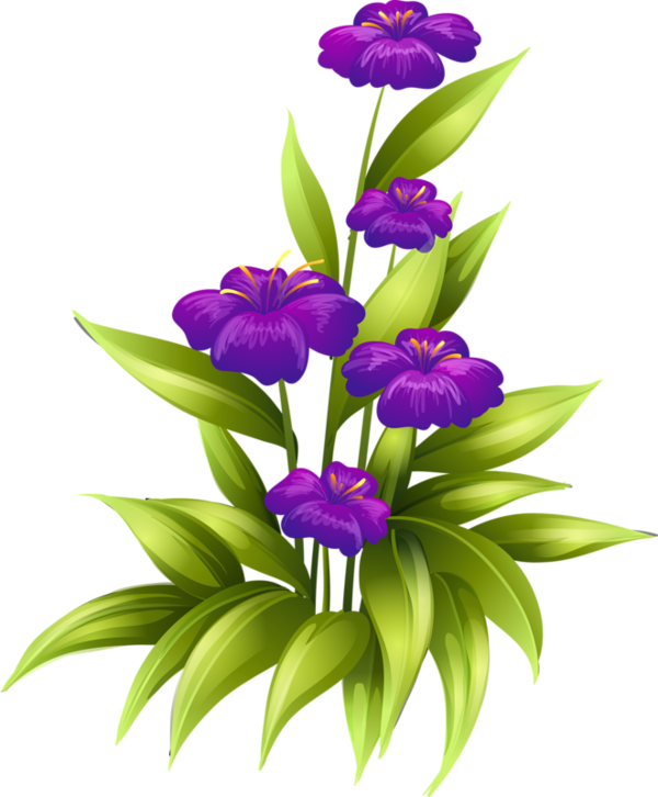 Passion flower clipart graphic freeuse download fleurs,tube,flowers,png | Kwiaty transparent | Pinterest | Flowers ... graphic freeuse download