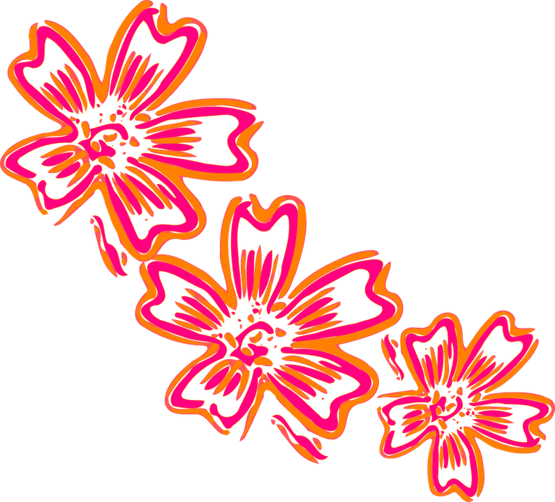 Design artwork free image library stock Free vector graphic: Flowers, Orange, Pink, Design - Free Image on ... image library stock