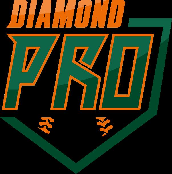 Diamond dawgs baseball clipart banner download Golisano Children's Hospital Book and Lego Drive - Team Diamond Pro banner download