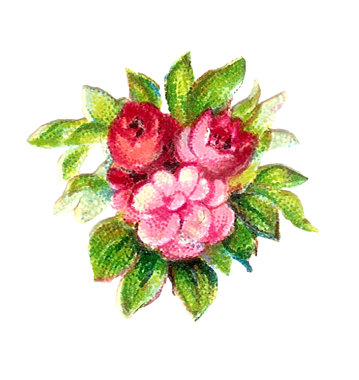 Digital flower clipart picture library stock Judy Scott (jes19420572) on Pinterest picture library stock