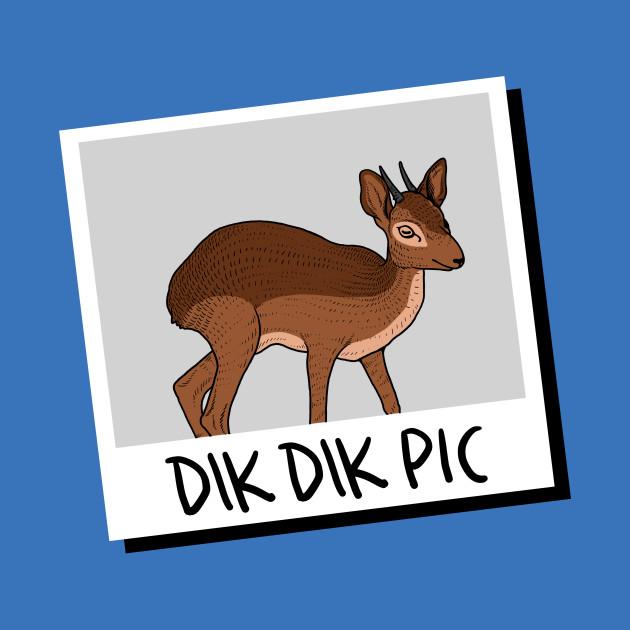 Dikdik clipart picture transparent Dik Dik Pic picture transparent