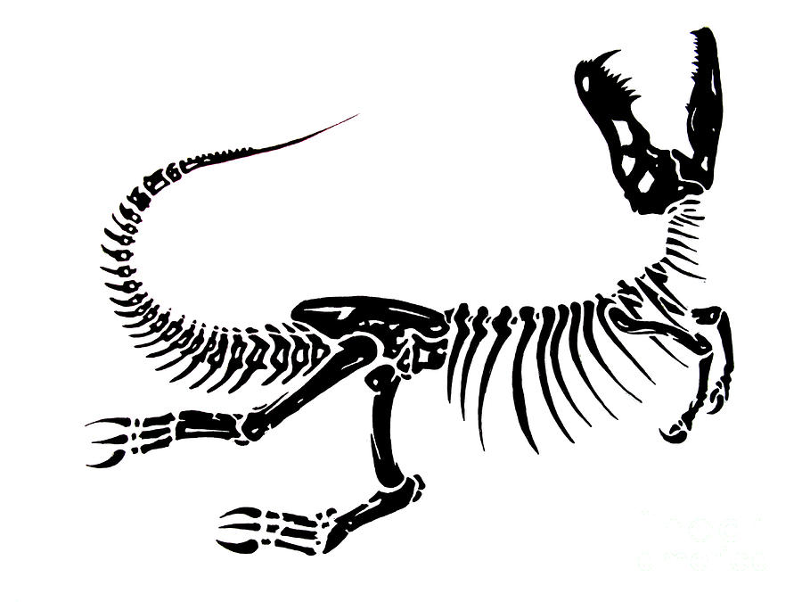 Dinosaur fossil clipart black and white library Free Dinosaur Bones Clipart, Download Free Clip Art, Free ... black and white library