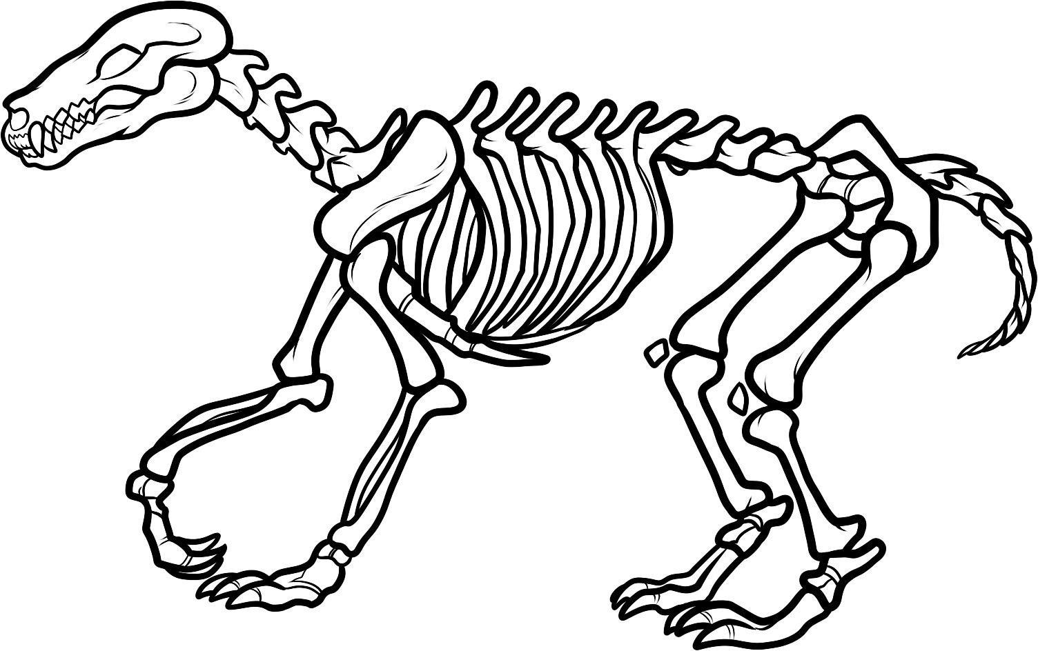 Dinosaur fossil clipart vector royalty free download Dinosaur Fossil Clip Art   Clipart Panda - Free Clipart Images vector royalty free download