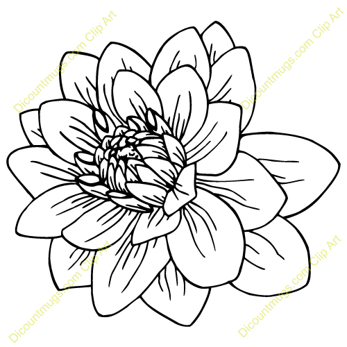 Discountmug clipart png transparent download Discountmugs.com - clipart | Inspiring Ink | Flower sketches ... png transparent download