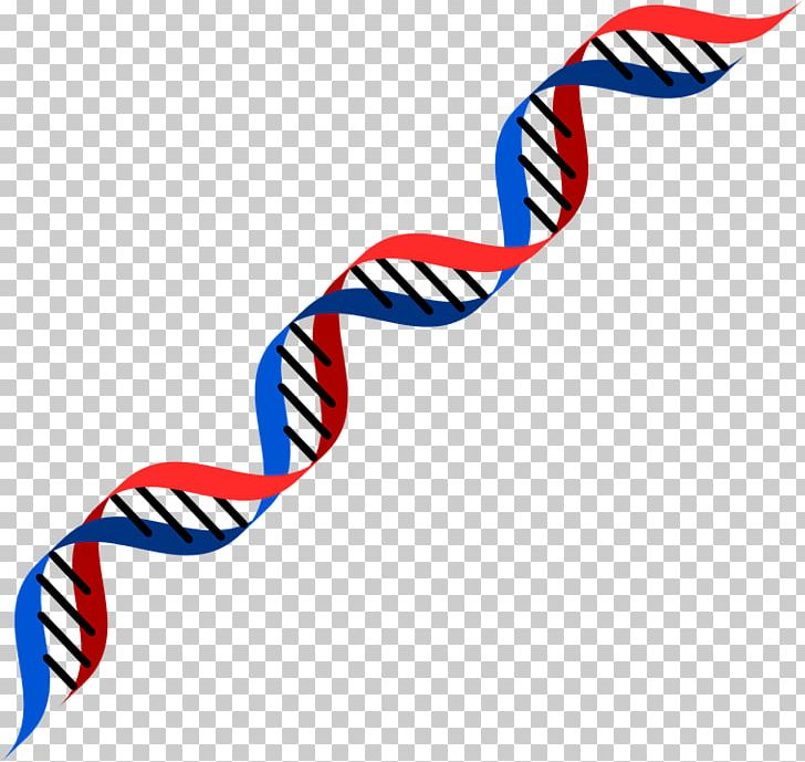 Dna testing clipart free stock DNA Genetics RNA Genetic Testing PNG, Clipart, Area, Biochemistry ... free stock