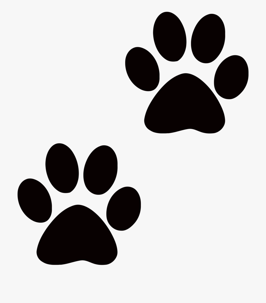 Dog and cat paw prints clipart