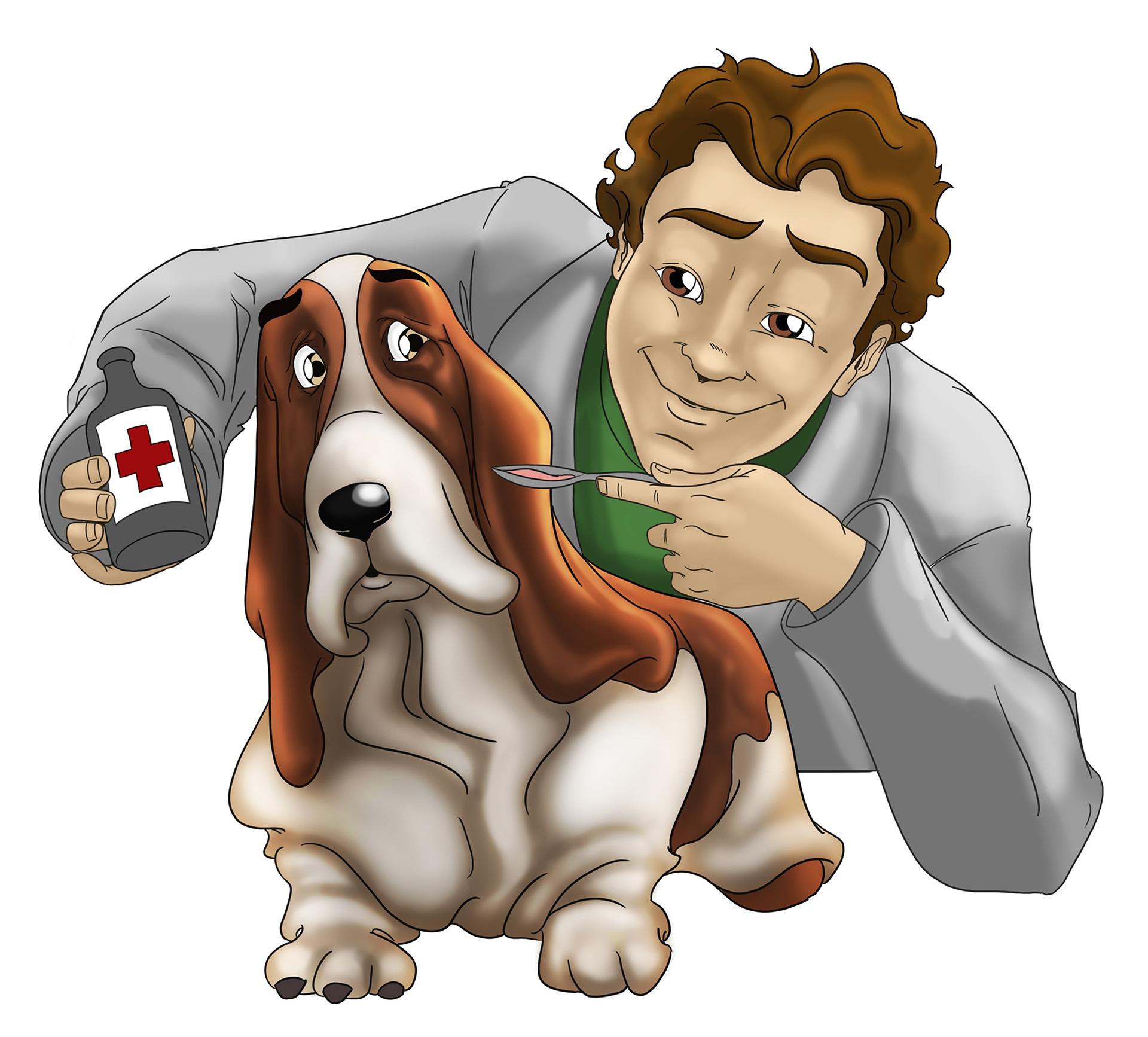 Dog at vet clipart clip art royalty free 28+ Collection of Free Vet Clipart | High quality, free cliparts ... clip art royalty free