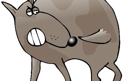 Dog biting tail clipart picture library download Why Does a Dog Chew on His Tail? - Pets picture library download