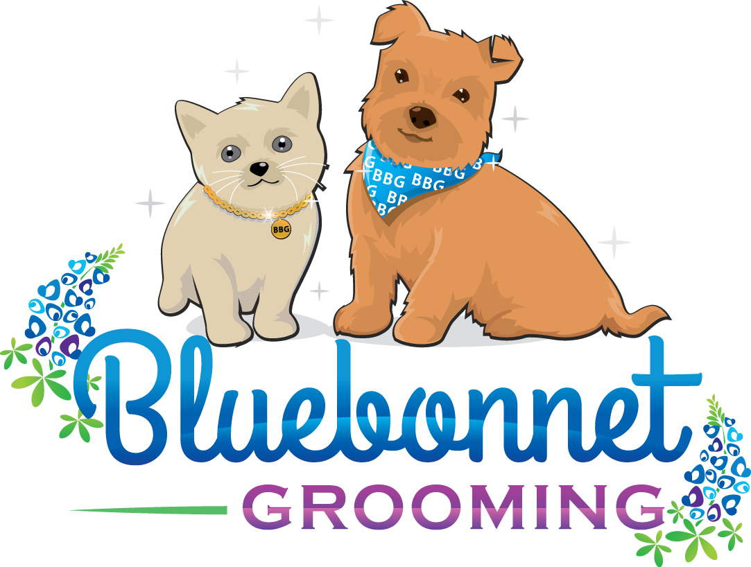 Home bluebonnet grooming welcome. Dog brushing teeth clipart