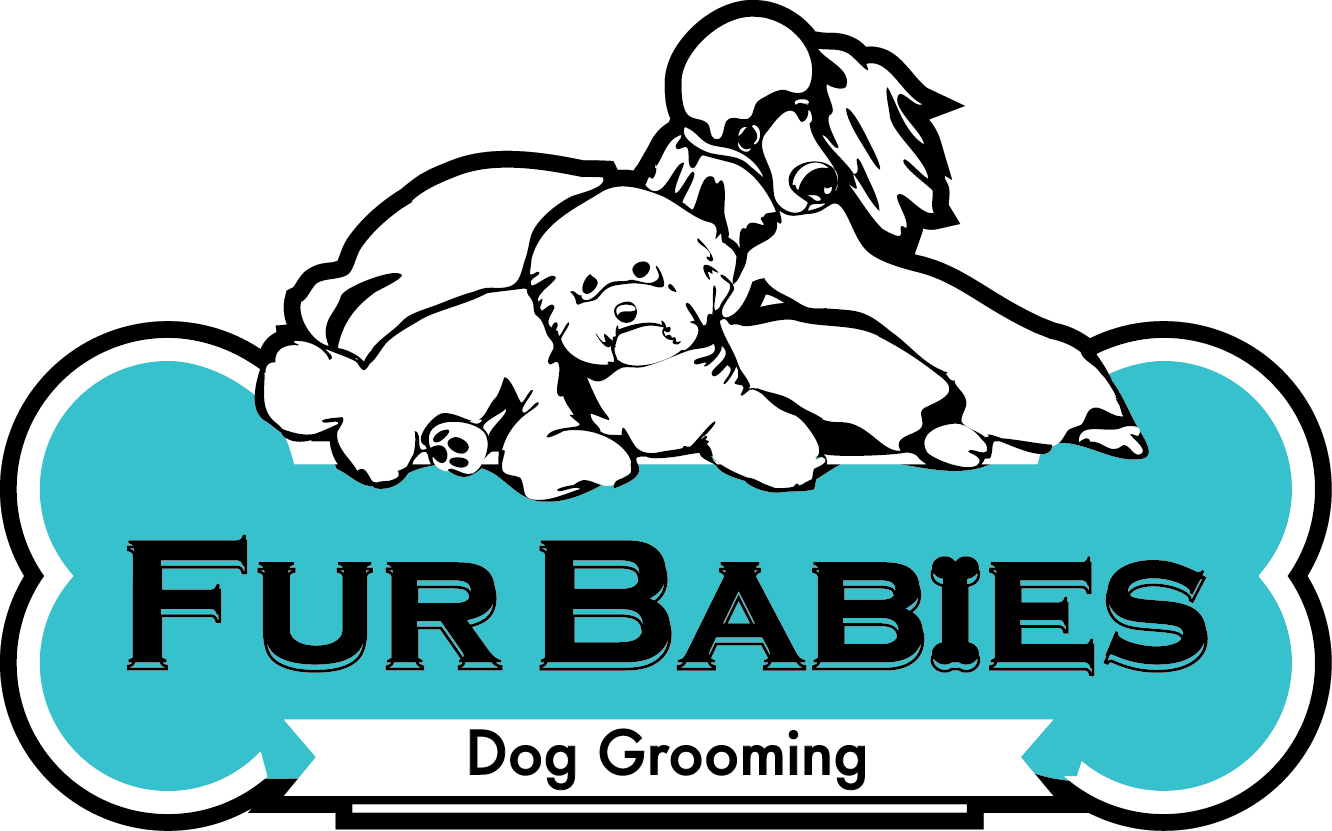 Dog brushing teeth clipart clip library library Fur Babies Dog Grooming clip library library