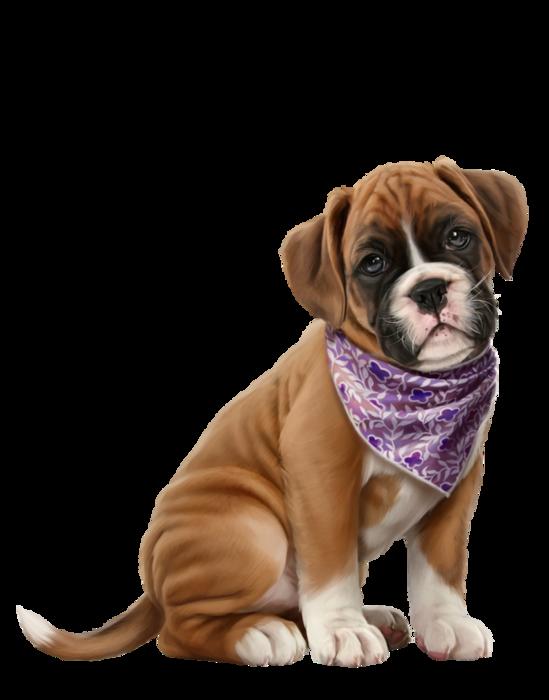 Dog cam clipart clip art library chiens,dog,puppies,wallpapers,dessin   Clip Art   Pinterest   Clip art clip art library