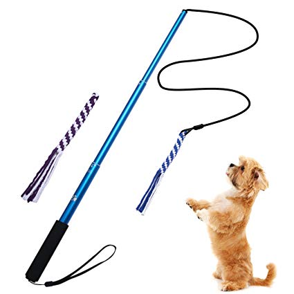 Dog chasing leaves clipart clipart transparent stock ANG Interactive Dog Tug Toy, Extendable Dog Teaser Wand with 2 Cotton Rope  Dog Toy Outdoor Playing for Pulling, Chasing, Chewing, Teasing, Training clipart transparent stock