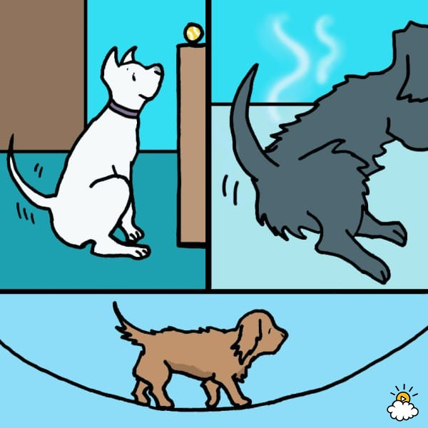 Dog chasing tail clipart graphic library Why Do Dogs Chase Their Tails? 7 Possible Reasons – YOURLAD graphic library