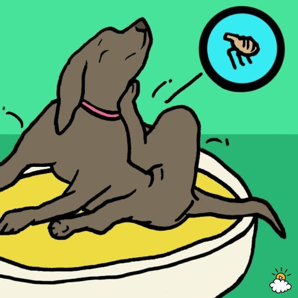 Dog chasing tail clipart. Why do dogs chase