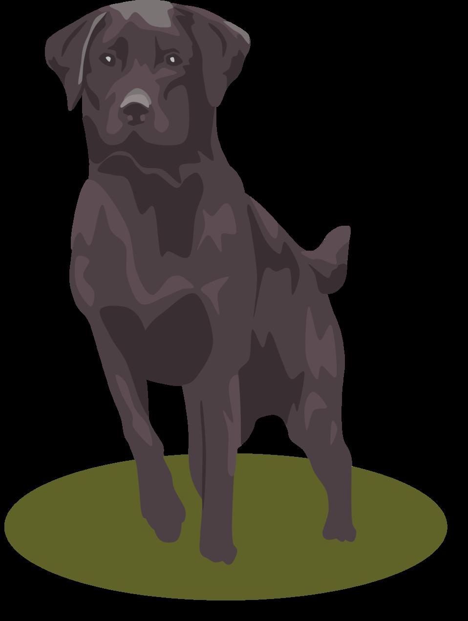 Dog clipart lab transparent download Public Domain Clip Art Image | Black Lab | ID: 13920039615544 ... transparent download