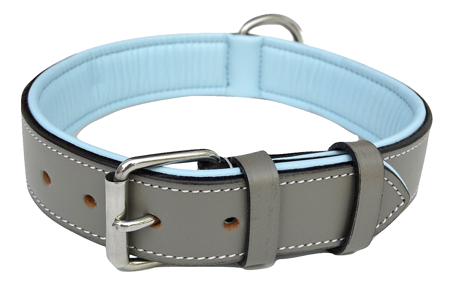 Png . Dog collar clipart no background