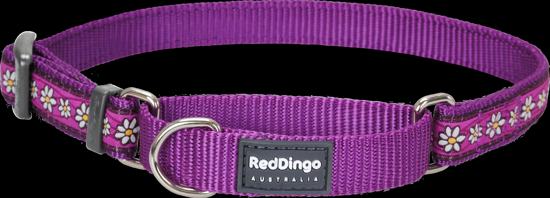 Dog collar leash clipart jpg free stock Dog collar PNG jpg free stock