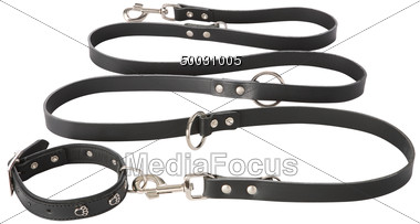 Dog collars free clipart black and white banner free download Stock Photo Black Leather Dog Collar Leash Clipart - Image 50031005 ... banner free download