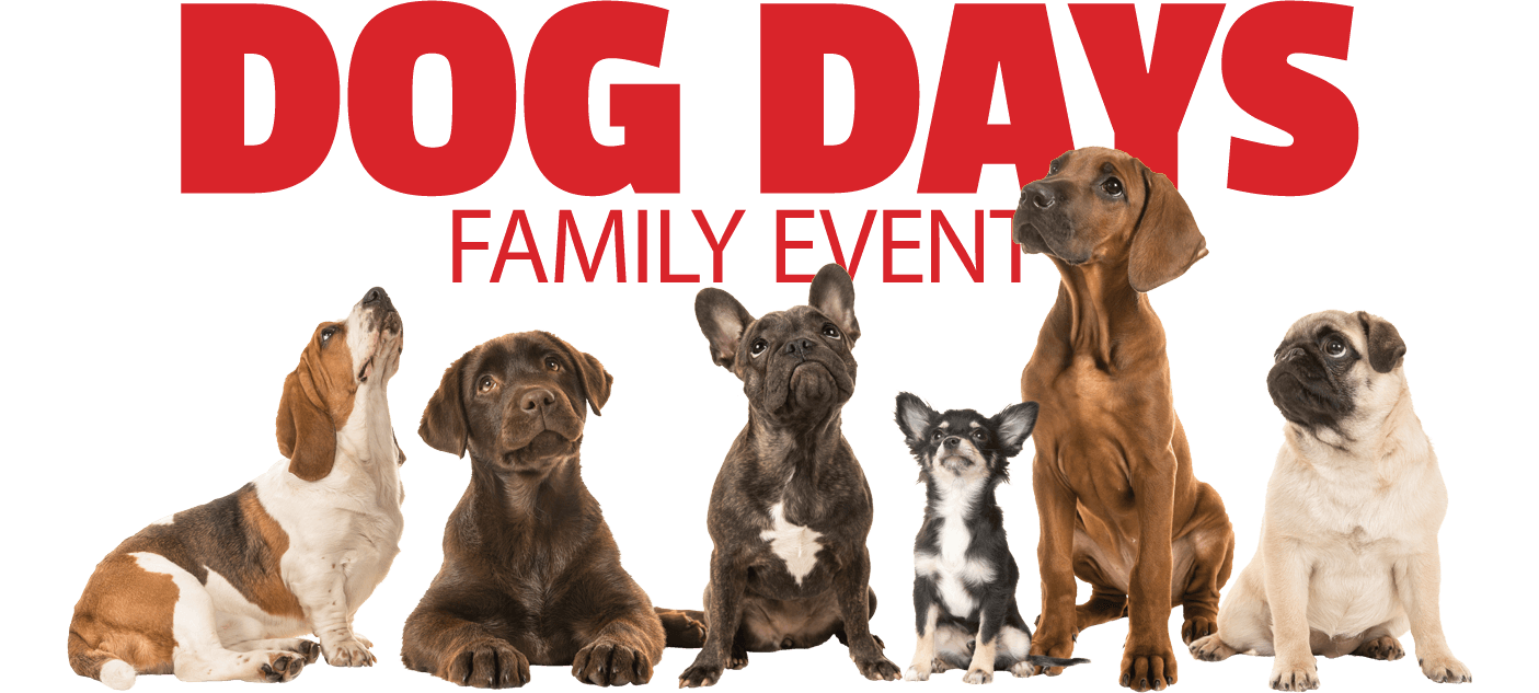 Cabela s header. Dog days of summer clipart