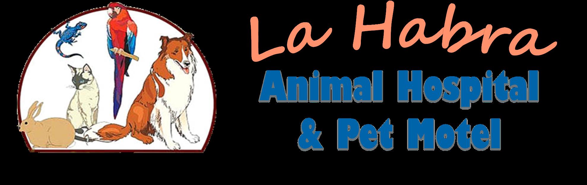 Dog doctor clipart black and white library Veterinarian in La Habra, CA | La Habra Animal Hospital & Pet Motel black and white library