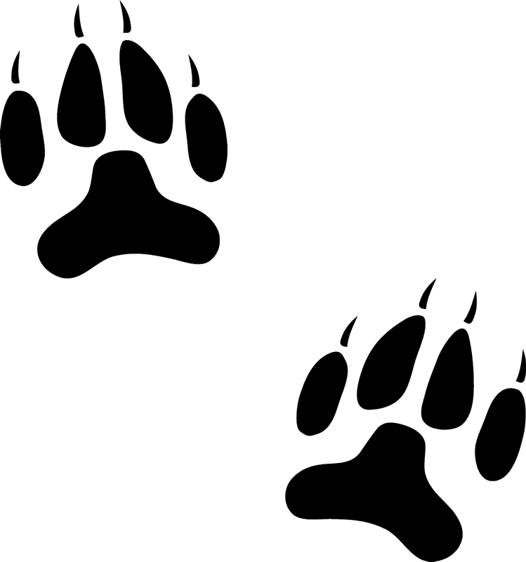 Dog paw border clipart. Prints stamp animal track