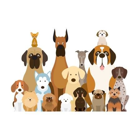 Dog hair standing up on back clipart freeuse stock Image result for clipart group of dogs | Grooming | Group of dogs ... freeuse stock