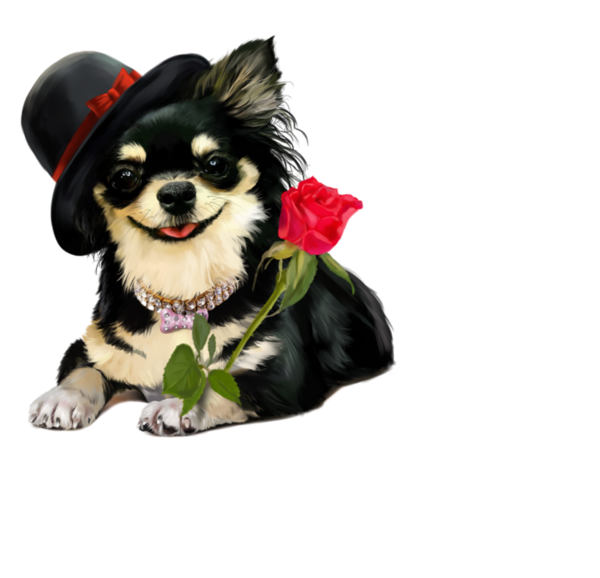 Dog in clothes clipart jpg freeuse download chiens,dog,puppies,wallpapers | Animal Clipart | Pinterest jpg freeuse download