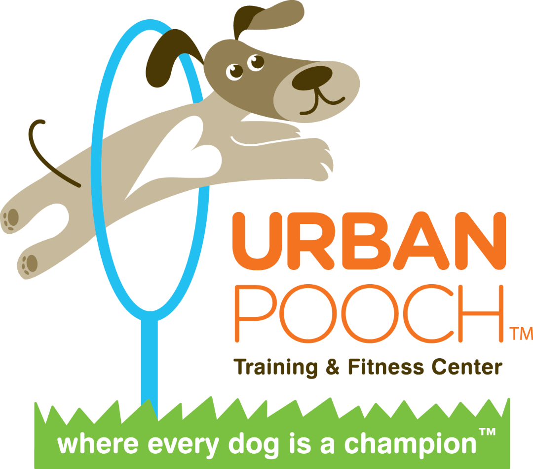 Dog jumping through hoop clipart picture library Doggie Egg Hunt | Horner Park Dog Park picture library