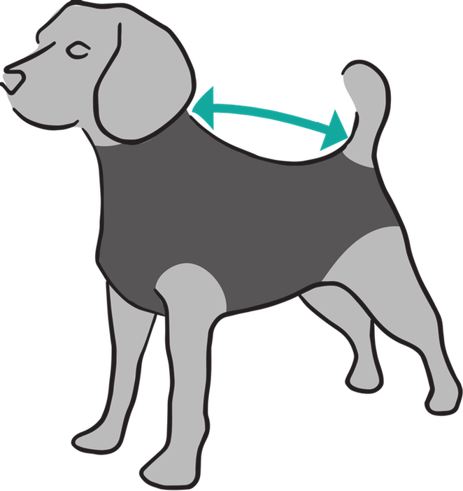 Dog peeing clipart clip royalty free Suitical International - Recovery Suit clip royalty free