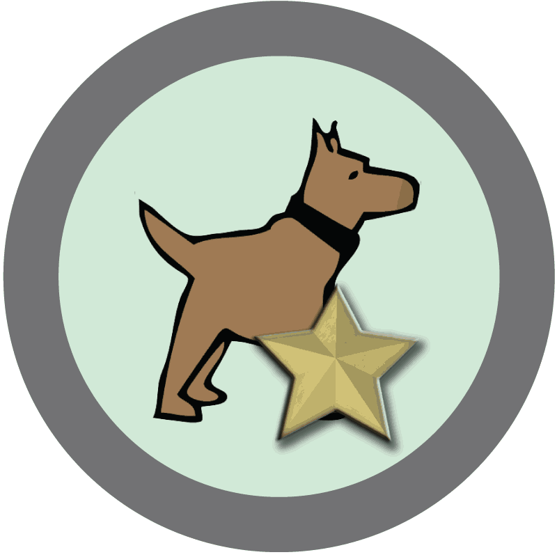 Submit activity fetch programming. Dog playing with ball clipart