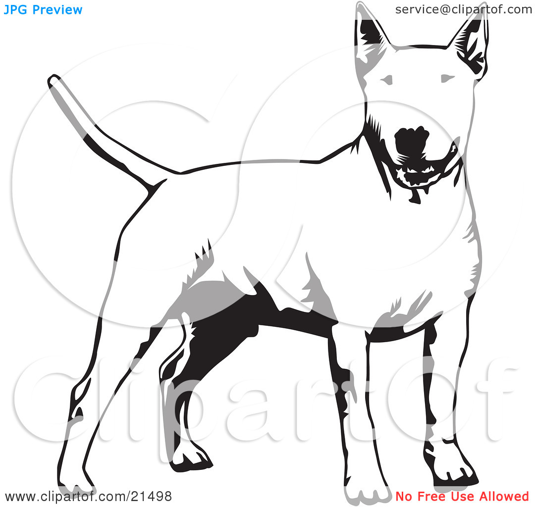 Dog tail clipart black and white png free library Clipart Illustration of an Alert Bull Terrier Dog Holdings Its ... png free library