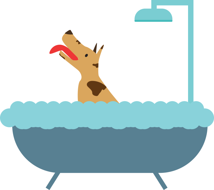 Dog taking a bath clipart banner free download Pet Camp | Dog and Cat Daycare and Boarding | San Francisco, CA banner free download
